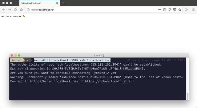 localhost.run HTTP tunnel